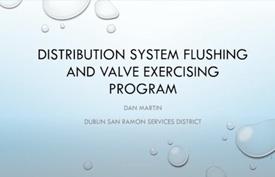 2021-BAYWORK-BACWWE-Distribution-System-Flushing-Valve-Exercising-Program-tn